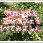 豆柴カフェが京都にあるみたいなのでいろいろ調べてみたよ♪