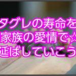 イタリアングレーハウンド☆家族の愛情で寿命を延ばす対策!!