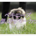 夏が楽しみになるペキニーズサマーカット画像!おすすめ10選!