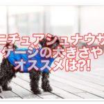 ミニチュアシュナウザーのケージの大きさ☆オススメはある?!