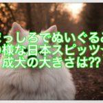 まっしろでぬいぐるみの様な日本スピッツ☆成犬の大きさは⁇