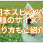日本スピッツの服のサイズは⁇サイズの測り方も紹介します☆