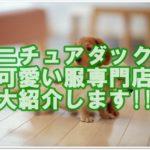 ミニチュアダックスフンドの可愛い服専門店を大紹介します!!
