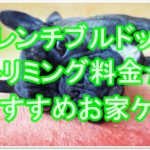 フレンチブルドッグのトリミング料金☆おすすめお家ケアも!!