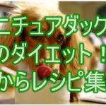 ミニチュアダックスのダイエットにはおからが最適!!レシピ集