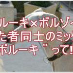 サルーキとボルゾイ★似た者同士をミックスしたらどんな犬!?