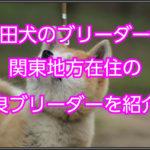 秋田犬のブリーダー☆関東地方在住の優良ブリーダーの紹介☆