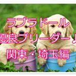 ラブラドールレトリバーの優良ブリーダー紹介♪関東・埼玉編