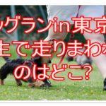 ドッグランin東京!公園や芝生で駆け回りたい!おすすめを紹介