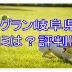 ドッグラン岐阜県の口コミを確認!評判は?ドッグランのマナーも解説!!