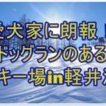 嬉しい!!ドッグランのあるスキー場!!軽井沢スノーパークのご紹介!!