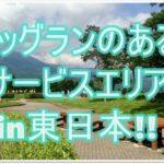 ドッグランのあるサービスエリアの紹介in東日本!!三芳PAにはある??