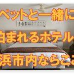 ペットと一緒に泊まれるホテルを探そう!!横浜市のオススメはココ!!